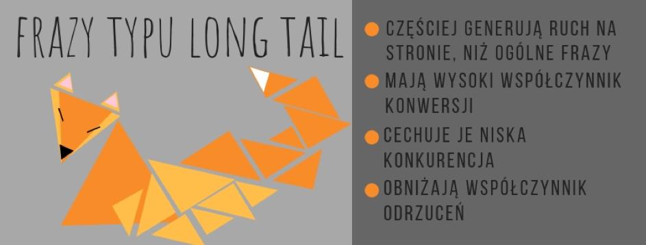 Długi ogon, inaczej long tail, to określenie dlasłów kluczowych, składających się zwielu wyrazów.